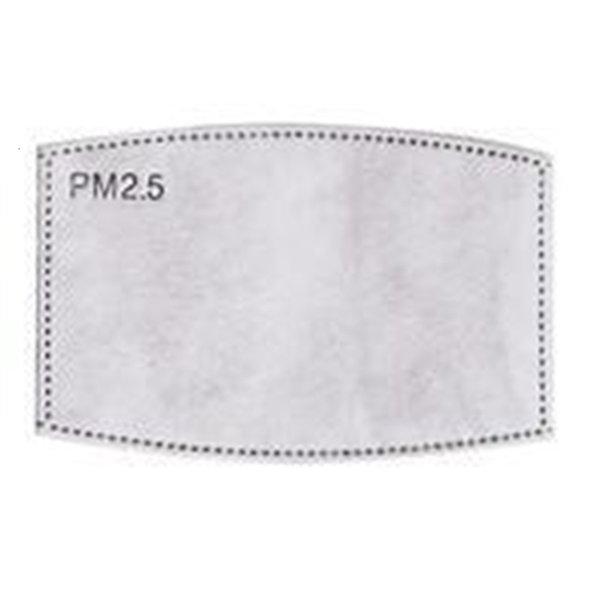 Pm 2.5 Filtro (adultos)