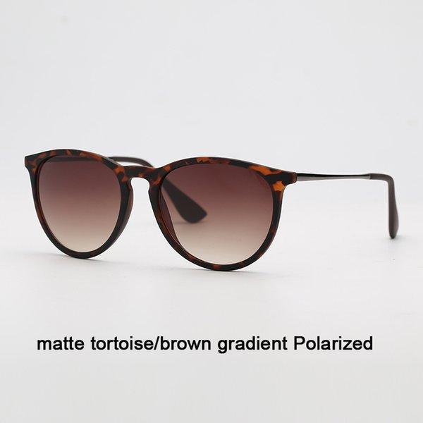 865 / T5 Matte Tortue / gradient brun p