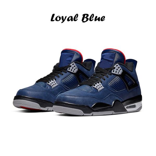 19 bleu loyal