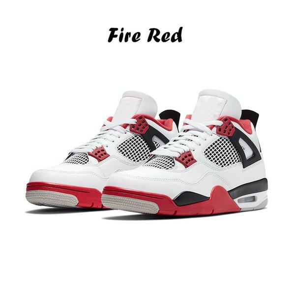 11 feu rouge