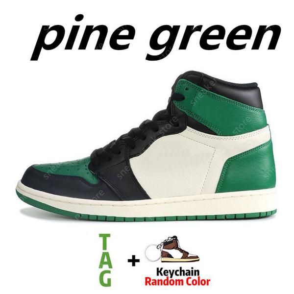 сосна зеленый