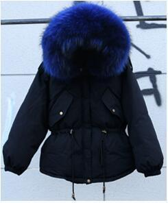 Black And Blue Fur