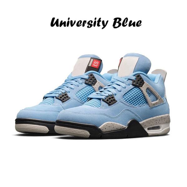 1 bleu d'université