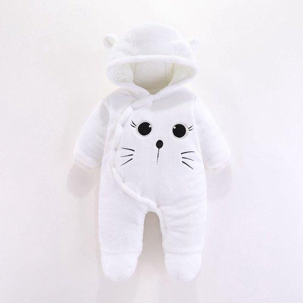 Cat-white