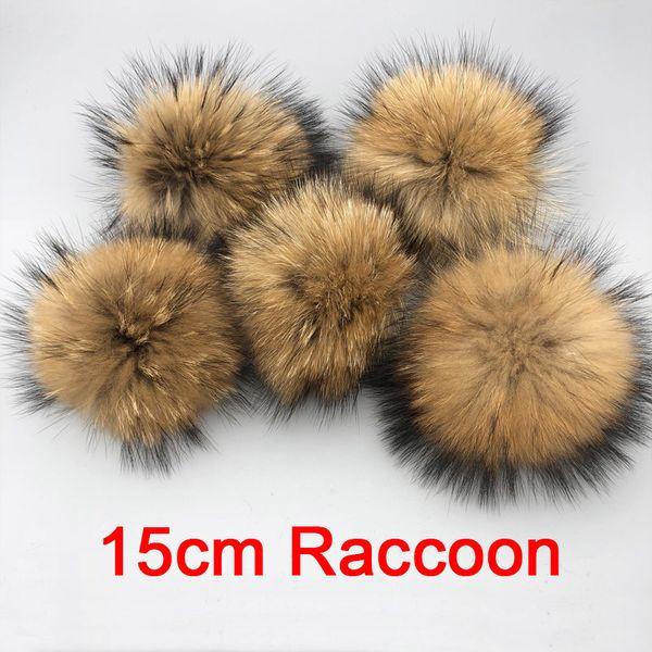 Raccoon de 15cm 5 peça