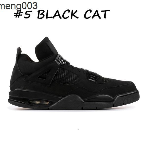 5 chat noir