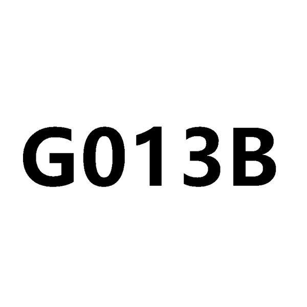 G013b