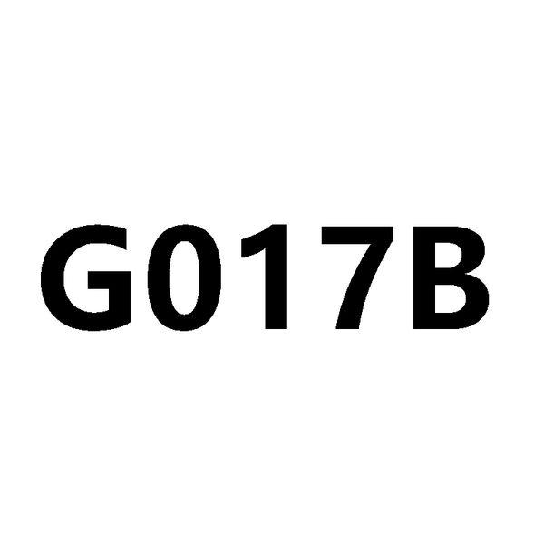 G017b