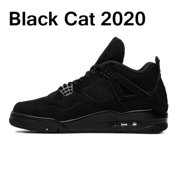 # 1 القط الأسود 36-47