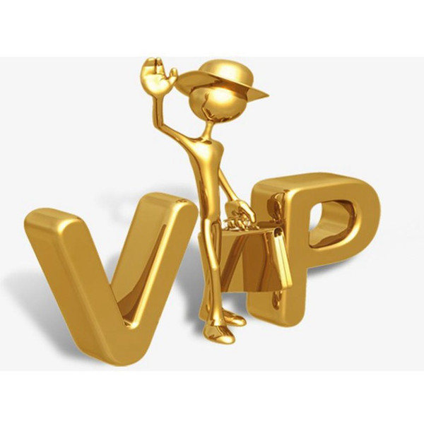 best selling Link to Pay ZZA Only For Specific Payment CYZ100000 VIP VIP VIP