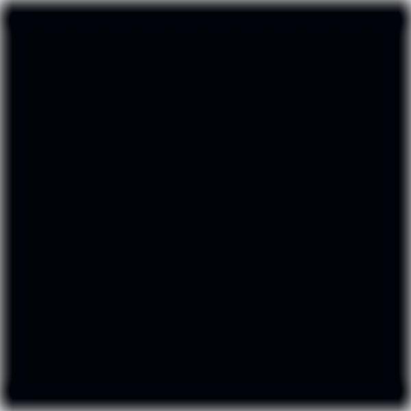 Noir (stock)