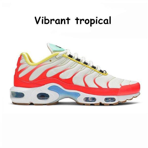 9 tropical vibrante 36-40
