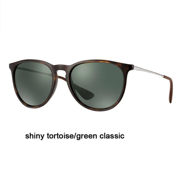 710/71 Tortoise brillante / classique verte