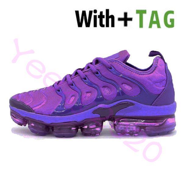 6 coquettish púrpura