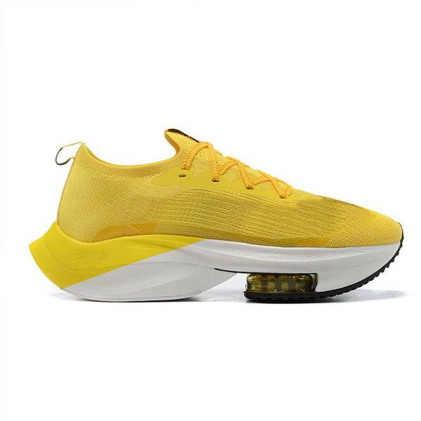 B10 Sarı Hız 36-45