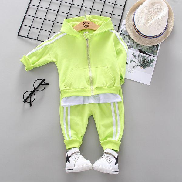 XH Latiaomao F Green