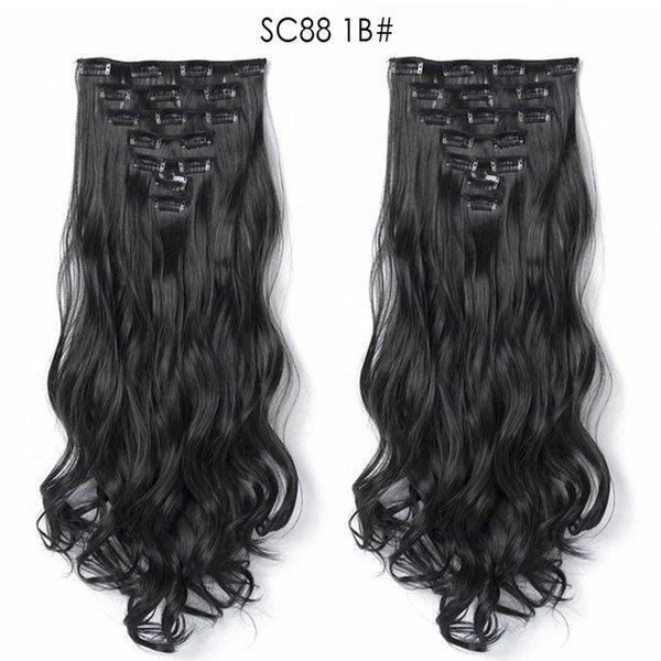 SC88-1b.