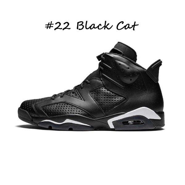 # 22 gato preto