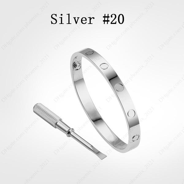 Silver #20