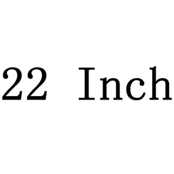 22 인치
