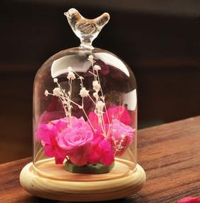 Hot Sale New Design and High Quality Decorative Glass Cover Vase with Size of Dia.12xH21.5cm for Home and Office Decoration