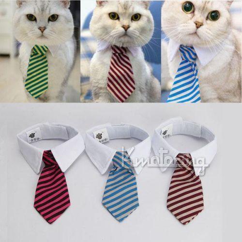 Pequeno tamanho médio cão gato pet stripe laço gravata colarinho branco multi cores