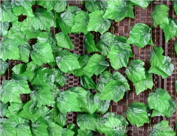الكروم العنب الأخضر