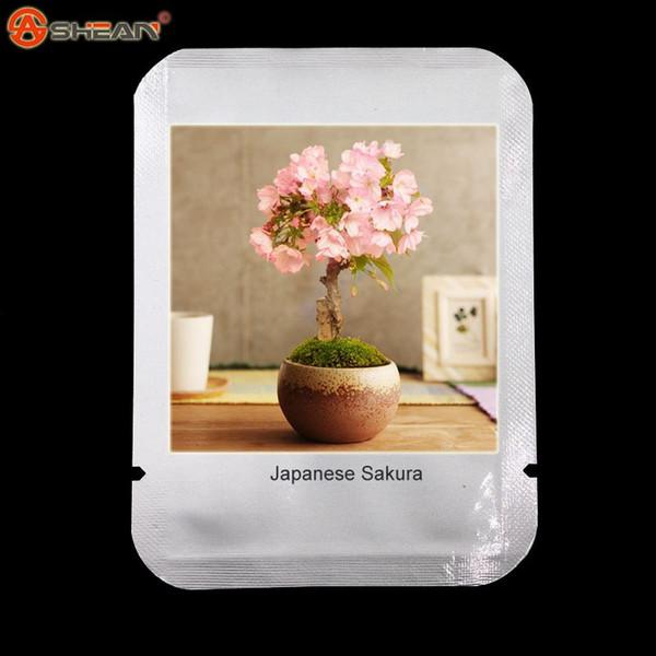 10pcs / lot japonés Sakura Seeds, Bonsai Flower Cherry Blossoms Ornamental-planta