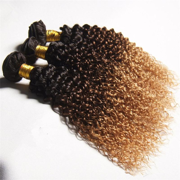 Peruvian Kinky Curly Virgin Hair Ombre 3 Bundles Afro Kinky Curly Human Hair Weave # 1b 4 27 Brown Blonde Hair 3Pcs/lot