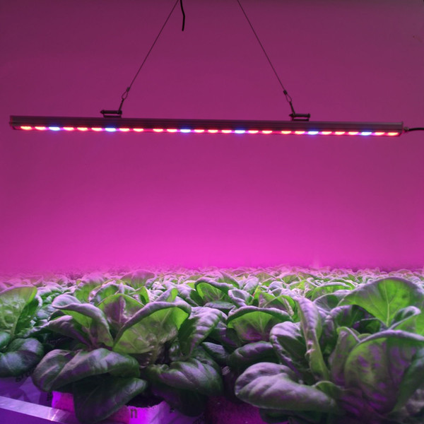 plant light lights grow greenhouse blue ultra application lamp botanical dp red leds hydroponic lendoo led thin