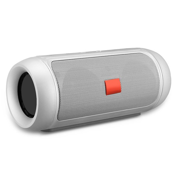 Gray_Speaker with Logo