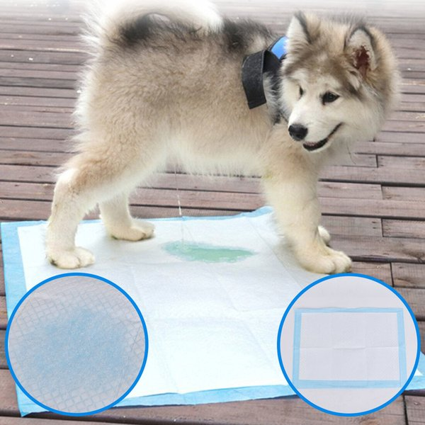 Pet Diaper Disposable Dog Poop Bag Dog Potty Super Absorbent Training Dog Diaper Healthy Cleaning Pad Puppies Training Mat