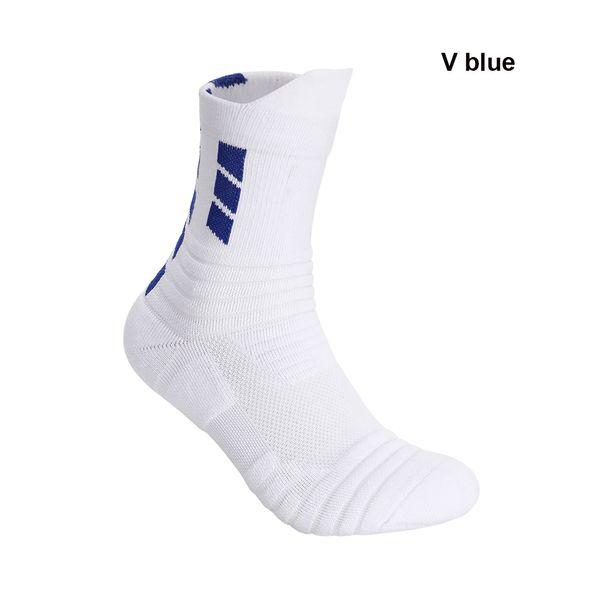 V4 bleu