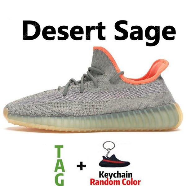 사막 세이지