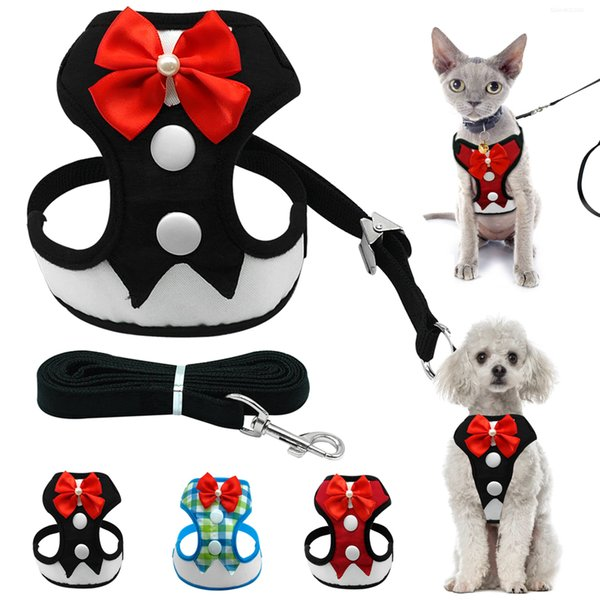 Mesh Small Dog Harness Nylon Breathable Puppy Dog Evening Dress Harness Vest Pet Walking Harnesses Leash Set for Small Dogs Cat