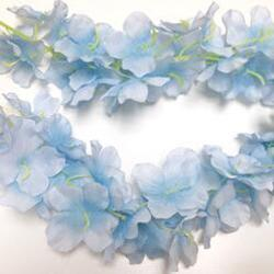 12 blanco azul