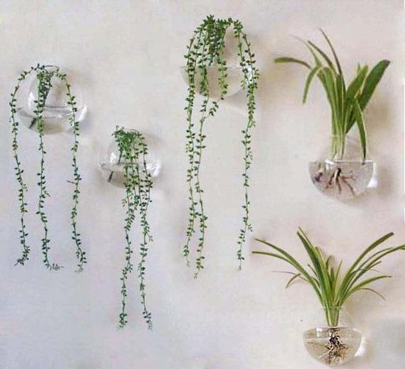 Home Decor Wall Hangings as a professional artwork manufacturers santinart has already produced tons of paintings which are distributed to all over the world including north 5pcsset 56 Glass Wall Hanging Plant Orbterrarium With