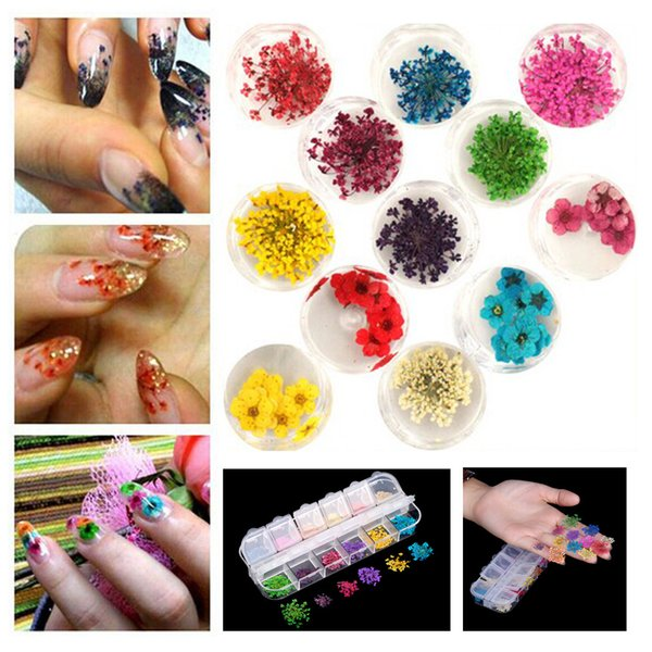 12 Colors Real Nail Dried Flower Nail Art Stickers Tips Decoration With Case Small Flowers Fashion styling Tools DIY