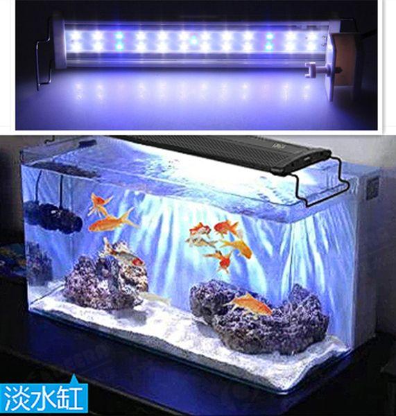 Las LED La Lámpara Luz Luces Tanque De Clip Acuario Color Blanco Y Las Luces Pescados Compre De De Del De W El 240V AC100 20L En 25 5W Azul Blanco FK1c53JuTl