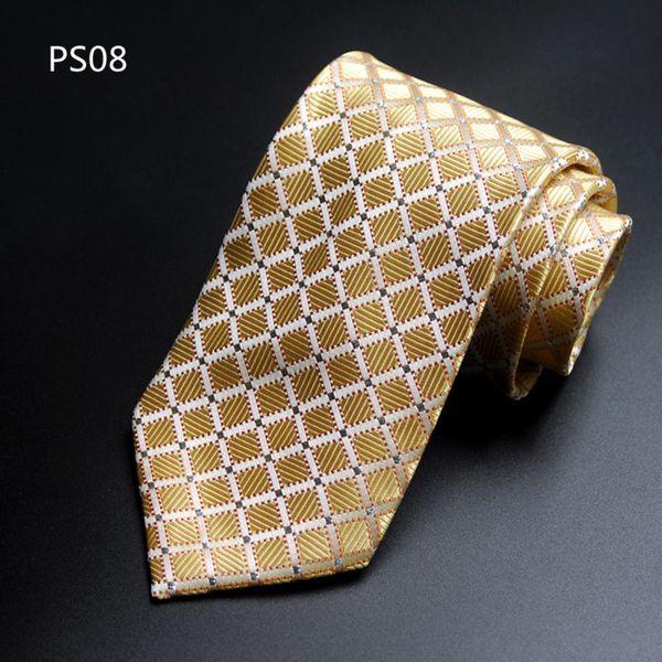 PS08.