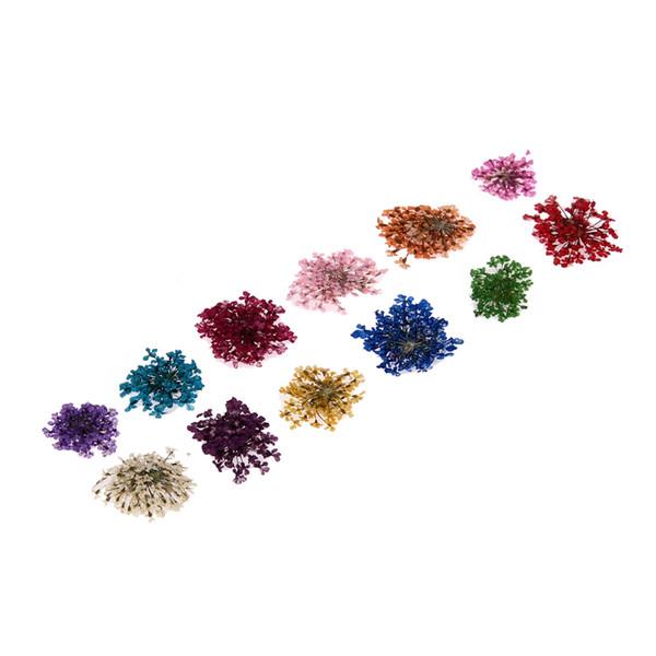 12 Color/Box Nail Art Nature Dry Flowers Set Gel Polish Tip 3D DIY Floral Potpourri Slices Decal Pro Manicure Pedicure Decor Kit