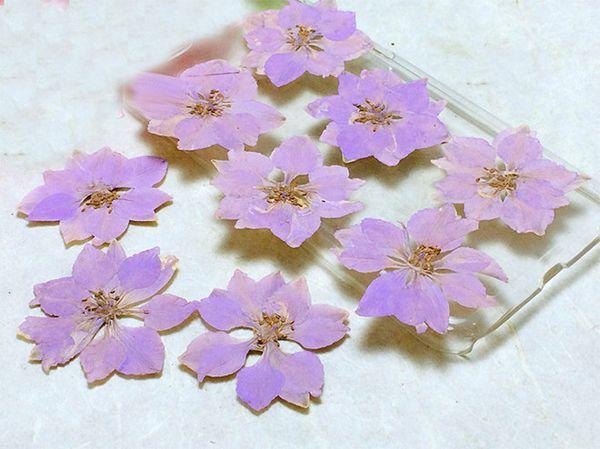 Factory Red / White / Purple Larkspur DIY Framed Pressed Flowers For Iphone Case floral Specimens Wholesale Free shipment 1 lot/120pcs