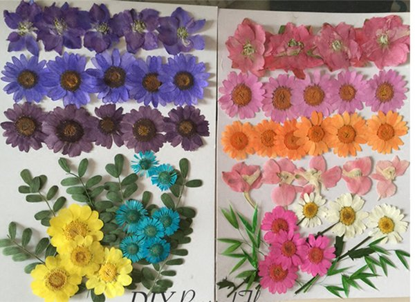 Pressed Flowers Phone Case DIY Raw Material bags Vacuum Packing 2 bags