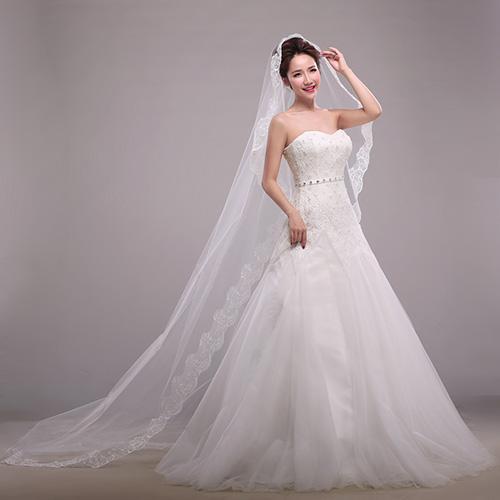 2016 new lace applique Bridal Veils wedding chapel 3m trailing Bridal Veils wedding dress headgear plus size