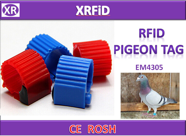 Version3 opend Type EM4305 rfid pigeon ring tag Dia 10mm 134.2khz ABS pigeon tag blank format 500pcs/lot Free Ship