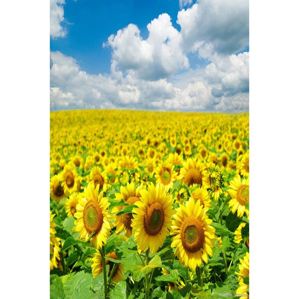 Diy Diamond Painting home decor 100% square drill gift Cross Stitch Mosaic Embroidery bedroom Sunflower 40X60CM HWC-548