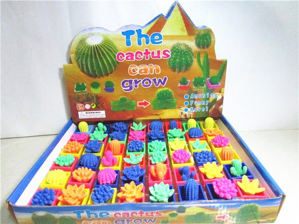 best selling Novel Growing Toys plants Cactus flower Soaking expansion Growing houseplant Educational Toys Interesting Birthday Xmas Festival Gifts