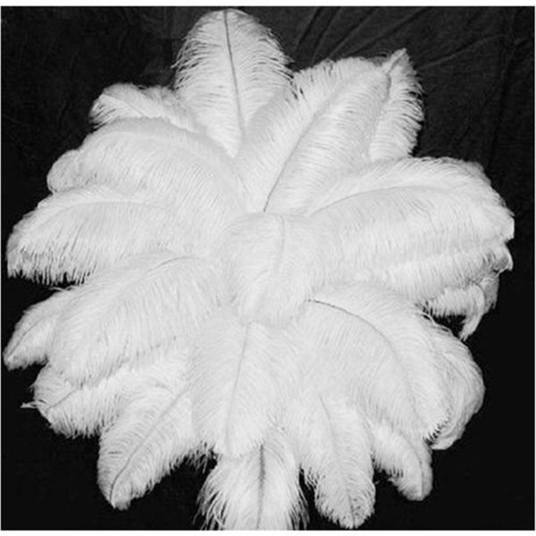 "top popular Wholesale Quality Natural OSTRICH FEATHERS ""12-14"" Inch White Color 2019"