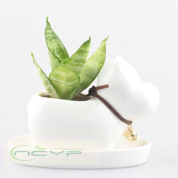 Großhandel Kawaii Sukkulenten Pflanzen Keramik Blumentopf Hund Perle ...