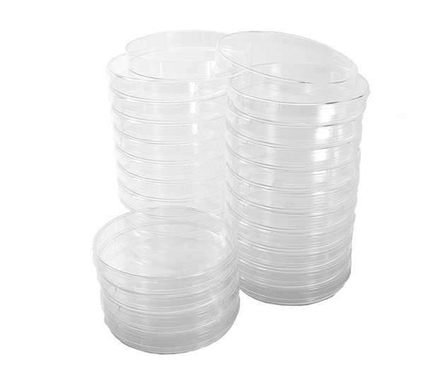 top popular Petri Dish 100 x 15Mm Sterile, Vented, 20 pcs  Pack 2021